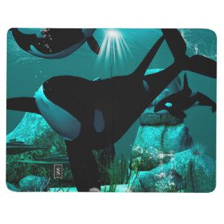 Orcas Journals