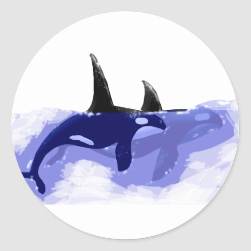 Orcas Killer Whales Classic Round Sticker