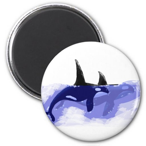 Orcas Killer Whales Magnets