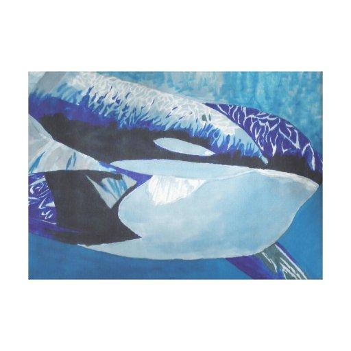 Orcas Lona Envuelta Para Galerías