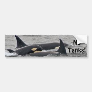 "Orcas ""No Tanks"" Bumper Sticker Car Bumper Sticker"
