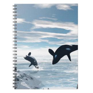 Orcas Note Book