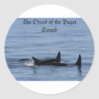 Orcas of the Puget Sound Classic Round Sticker