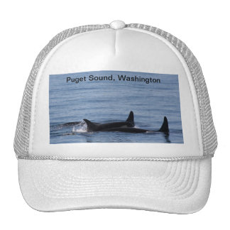 Orcas of the Puget Sound Trucker Hat