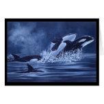 Orcas On The Run Card