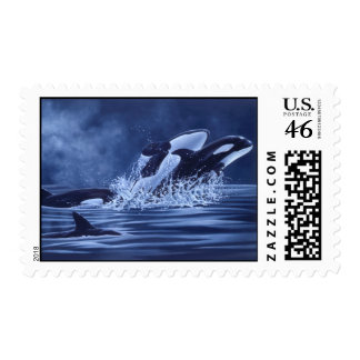 Orcas Postage Stamp