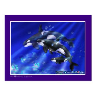 orcas postal