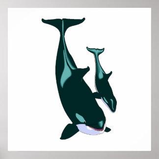 Orcas Póster