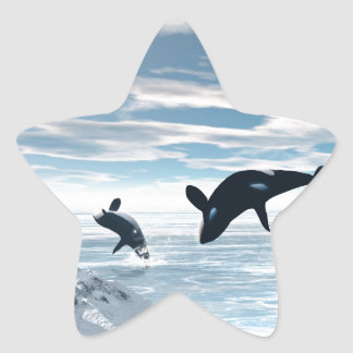 Orcas Star Stickers
