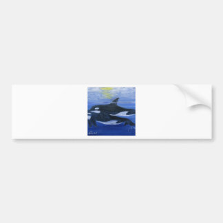 Orcas swimming bumper stickers