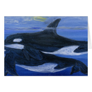 Orcas swimming card