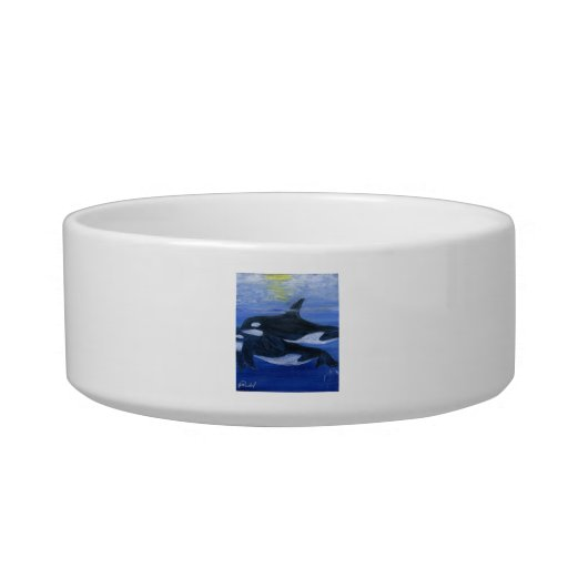 Orcas swimming cat bowl