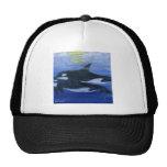 Orcas swimming mesh hats