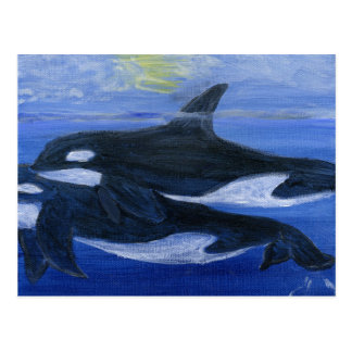 Orcas swimming postcard