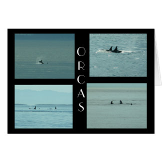 ORCAS TARJETA DE FELICITACIÓN