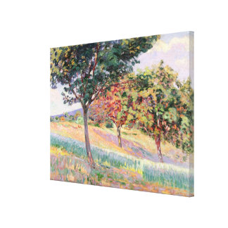 Orchard at St. Cheron, 1893 (oil on canvas) Canvas Print