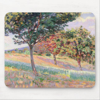 Orchard at St. Cheron, 1893 (oil on canvas) Mouse Pad