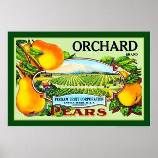 Orchard Brand Pears Vintage Advert Print