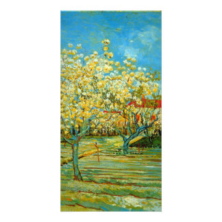 Orchard by Vincent van Gogh Custom Photo Card