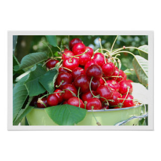 Orchard Cherries in a Bowl Print