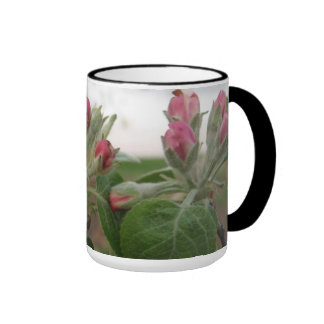 Orchard in bloom ringer coffee mug
