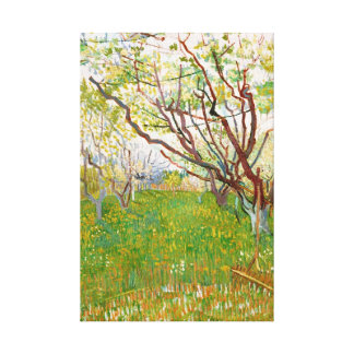 Orchard in Bloom Vincent van Gogh  fine art Stretched Canvas Print