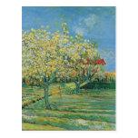 Orchard in Blossom, Vincent van Gogh Fine Art Postcard