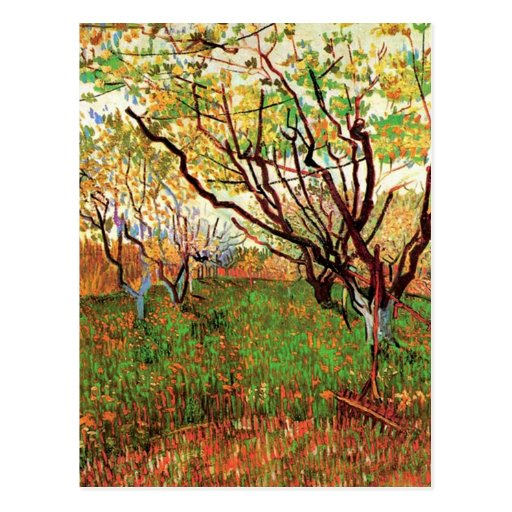 Orchard in Blossom, Vincent van Gogh Post Card