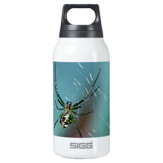 Orchard Orb Weaver Spider Insulated Water Bottle