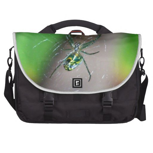 Orchard Orb Weaver Spider Bags For Laptop