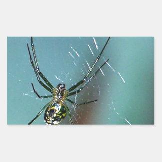 Orchard Orb Weaving Spider Rectangular Sticker
