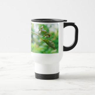 Orchard Orbweaver Spider - Leucauge venusta Travel Mug
