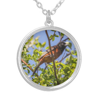 Orchard Oriole Personalized Necklace