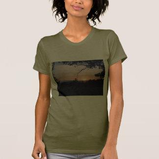 orchard sunset tshirts