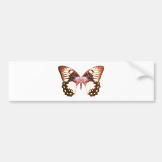 Orchard Swallowtail Butterfly Bumper Sticker