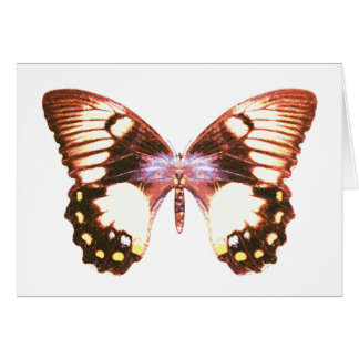 Orchard Swallowtail Butterfly Greeting Card