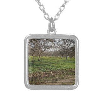 orchard trees landscape necklaces