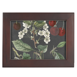 Orchard Varieties I Keepsake Box