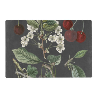 Orchard Varieties I Placemat