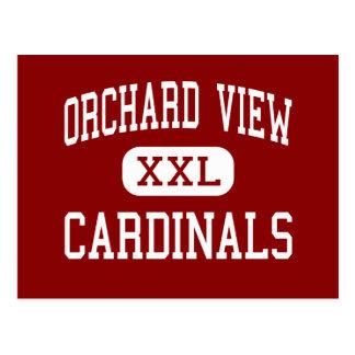 Orchard View - Cardinals - High - Muskegon Postcard