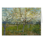 Orchard With Blossoming Apricot Trees, Van Gogh Greeting Card