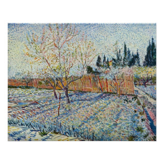Orchard with cypress by Vincent van Gogh Posters