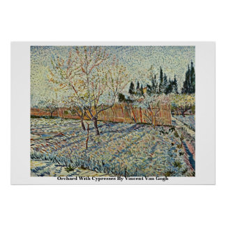 Orchard With Cypresses By Vincent Van Gogh Poster