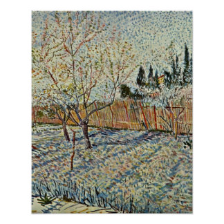 orchard with cypresses by Vincent Willem van Gogh Poster