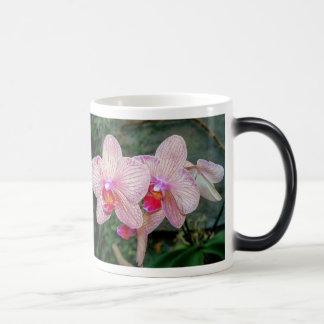 Orchid 001, Morphing Mug