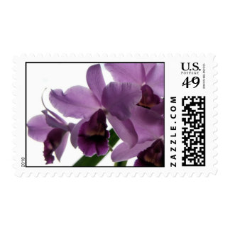 Orchid 1/ Wedding & All-Occasion Stamps