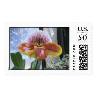 orchid 29 postage