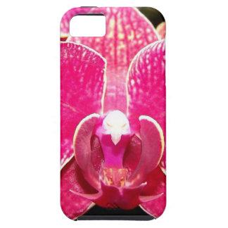 Orchid 2 iPhone SE/5/5s case