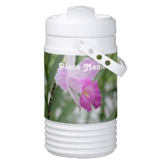 orchid-4.jpg igloo beverage dispenser
