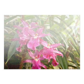 Orchid - A pleasant surprise Custom Invite